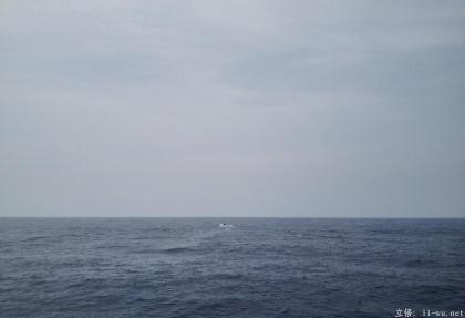 whale appears.jpg