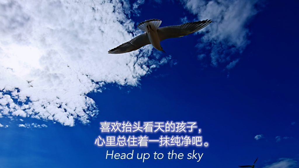Head Up To The Sky